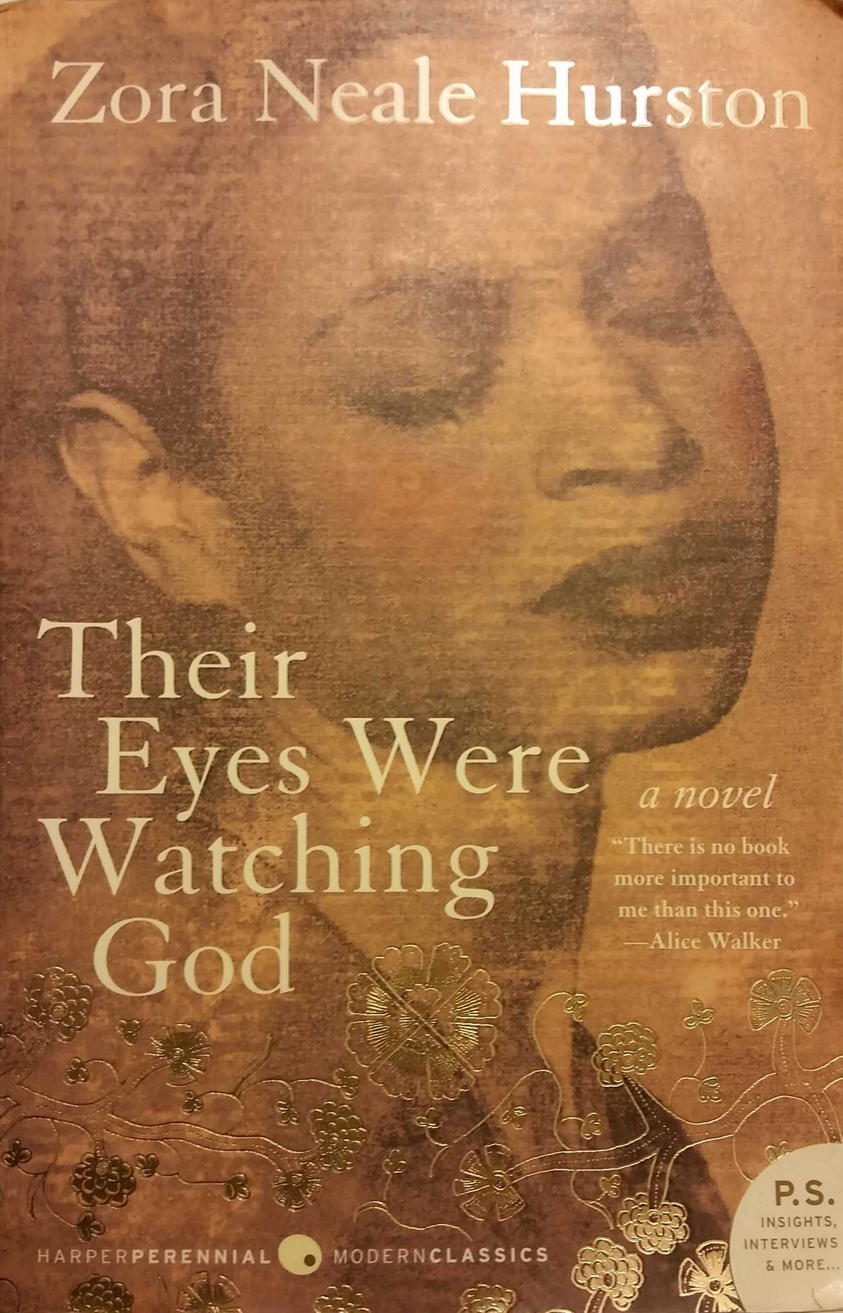 a summary of their eyes were watching god The paperback of the their eyes were watching god: a novel by zora   overview product details about the author read an excerpt more.