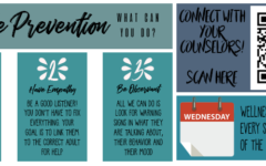 Suicide Prevention: What You Can Do