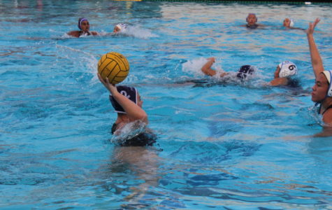 Girls' Water Polo Falls Short at Game of the Week