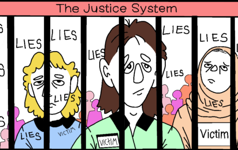 The Elite's Playground: The Criminal Justice System