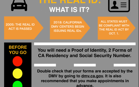 The Real ID: What Is It?