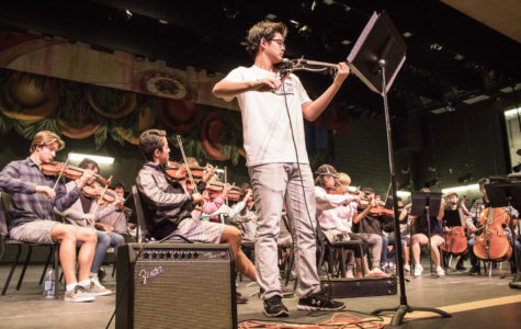 Bow-ndless Love For Music: A Feature On the Co-Concertmasters