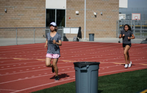 The Many Faces of Fitness Testing