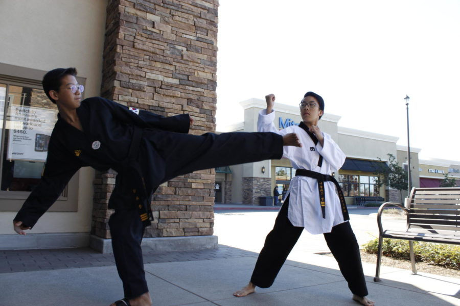 Freshman Jun Kim and sophomore Nicholas Hung perform the turning side kick and the middle block after their weekly training at IL-DO Taekwondo Center.