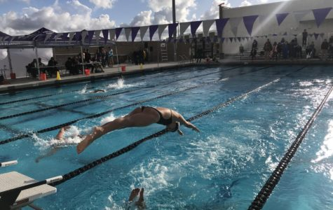 Girls' Swim Dives into First League Season