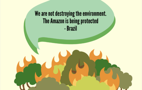 Fighting Fire with Environmental Concern: Brazil's Responsibility to the Amazon Rainforest