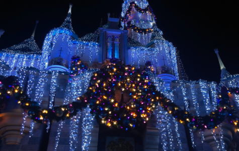 51,000 lights glimmer over Sleeping Beauty's castle, making the holiday season even more magical for all to enjoy.