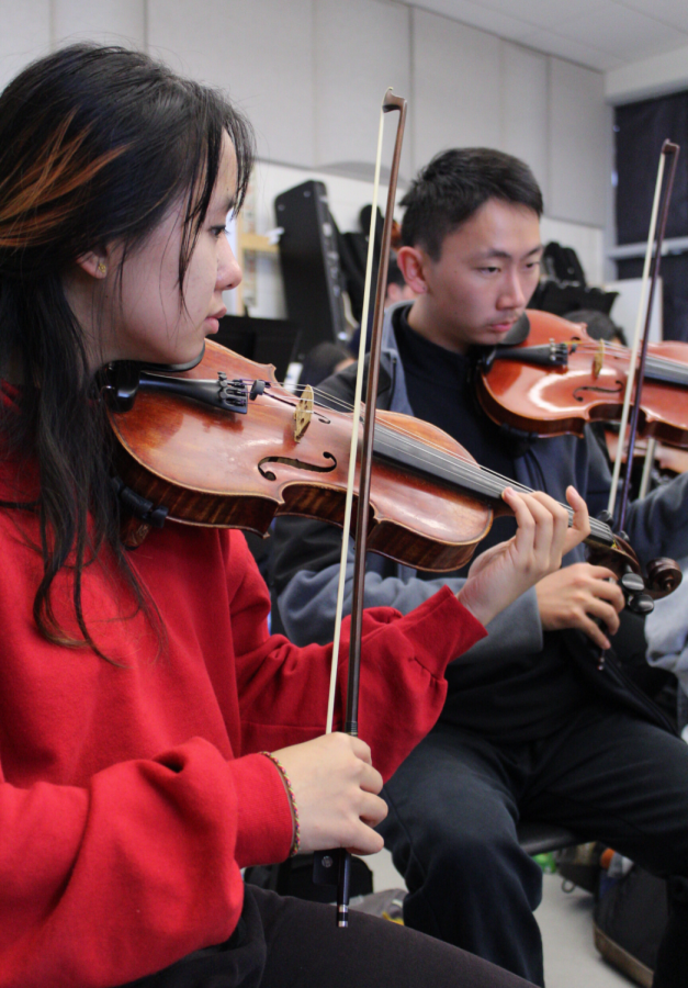 WORKING IN HARMONY. First violinists junior Annie Li and senior Andrew Wang hone their parts of