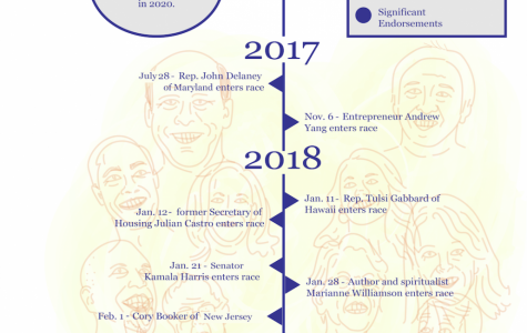 Democratic Primaries Timeline