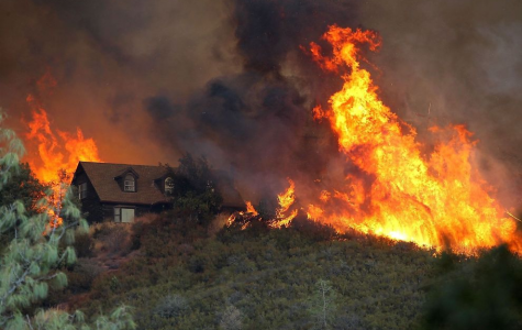 California's dry climate nurtures forest fires. Homes surrounded by dry grass and bush are especially vulnerable to burning down.