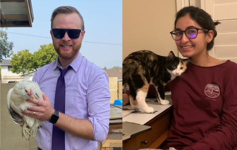 On the left, instrumental music director Kyle Traska holds his pet chicken, Elsa, for whom he assembled a coop out of a neighbor's old kitchen cabinet. On the right, junior Safah Faraz spends time with her four-month-old calico, Pepper, who is a clumsy yet lovable fool.